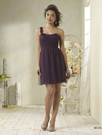 Alfred Angelo Style #8612S ~ Soft net